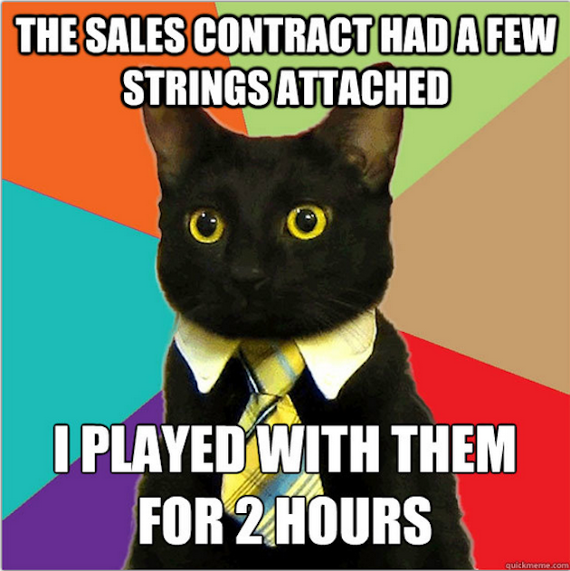 Business-Cat-Sales-Contract.png